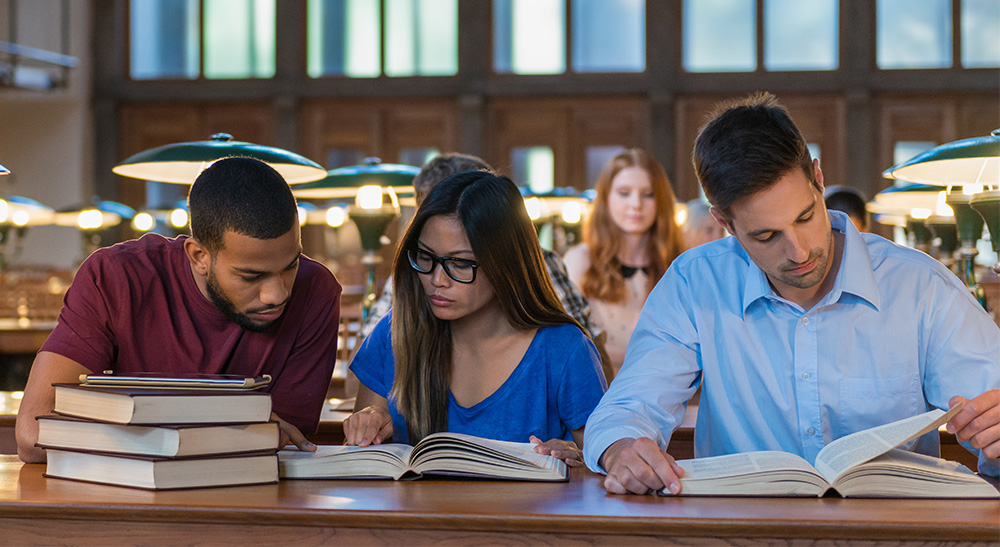Low Tuition Universities in Luxembourg with Tuition Fees